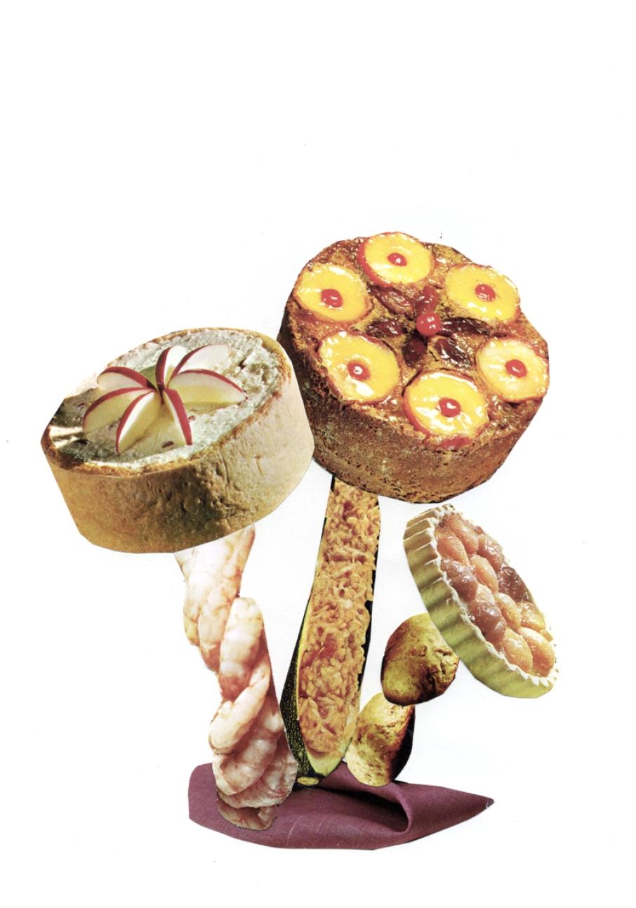 https://www.claudiahausfeld.com/files/gimgs/th-19_Poisonous Mushrooms037.jpg